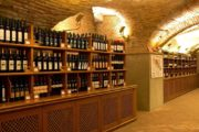 Гид Юлия Насырова: Тур «Дегустация 5 вин в Болонье» (фото 3)