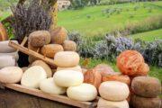 Экскурсия из Болоньи на био-производство тосканских сыров (фото 1)